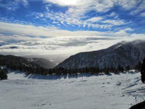 scholae ski