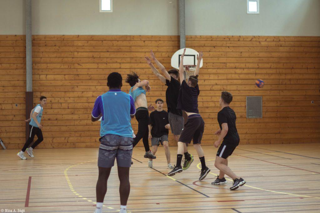 scholae handball